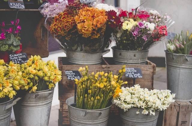 peluang usaha rumahan - toko bunga A